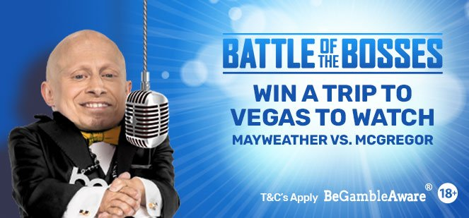 See Mayweather V McGregor In Las Vegas With Bgo.com!