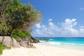 Win A Seychelles Holiday